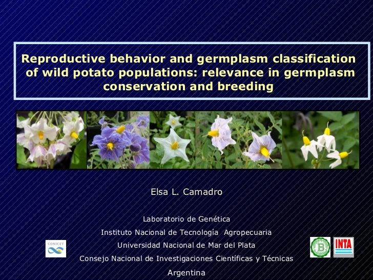 Reproductive behavior and germplasm classification of wild potato populations: relevance in germplasm             conserva...