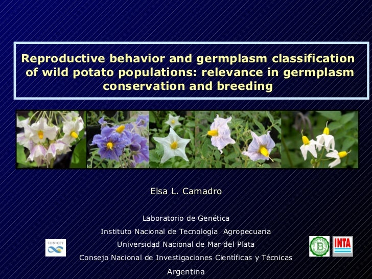 Elsa Camadro's presentation in the framework of the expert consultation on the use of crop wild relatives for pre-breeding in potato