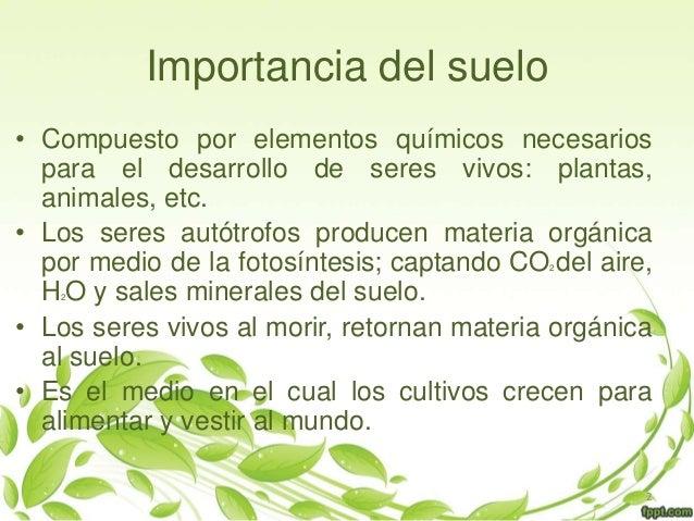 Seminario quimica for Importancia de los suelos