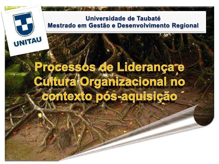 Processos de Liderança e Cultura Organizacional no contexto pós-aquisição
