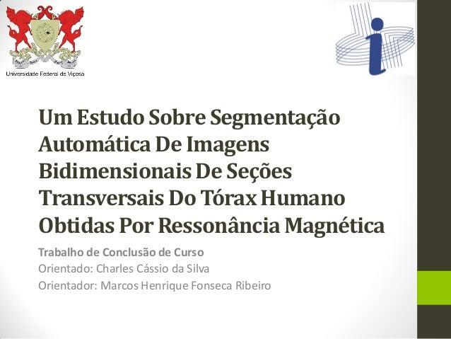 Um Estudo Sobre SegmentaçãoAutomática De ImagensBidimensionais De SeçõesTransversais Do Tórax HumanoObtidas Por Ressonânci...