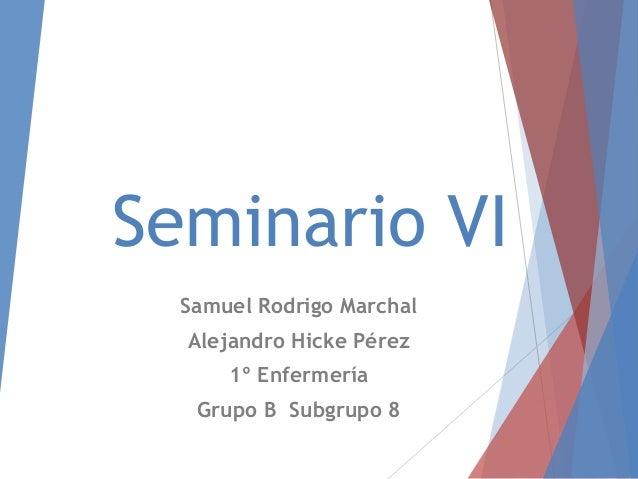 Seminario VISamuel Rodrigo MarchalAlejandro Hicke Pérez1º EnfermeríaGrupo B Subgrupo 8