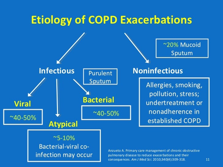 infective exacerbation copd steroids