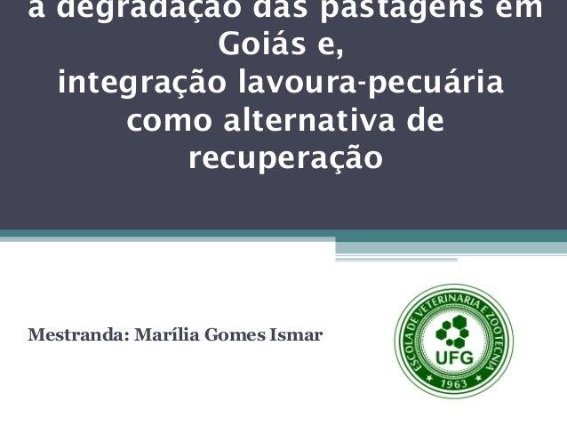 a degradação das pastagens em Goiás e, integração lavoura-pecuária como alternativa de recuperação  Mestranda: Marília Gom...