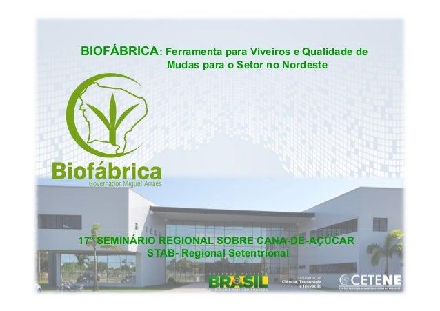 BIOFÁBRICA: Ferramenta para Viveiros e Qualidade deMudas para o Setor no Nordeste17° SEMINÁRIO REGIONAL SOBRE CANA-DE-AÇÚC...