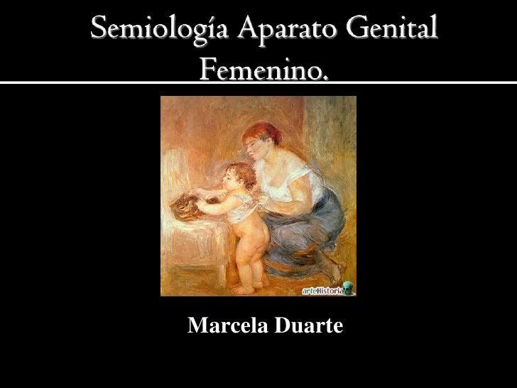 Semiología aparato genital femenino(examen ginecologico)