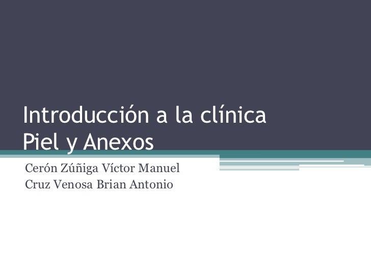Introducción a la clínicaPiel y AnexosCerón Zúñiga Víctor ManuelCruz Venosa Brian Antonio