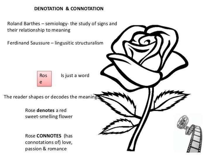 semiotics essay