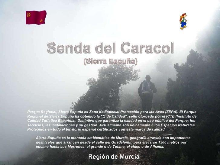 Álbum de fotografías por apala Sierra Espuña es la montaña emblemática de Murcia, geografía atrevida con imponentes desniv...