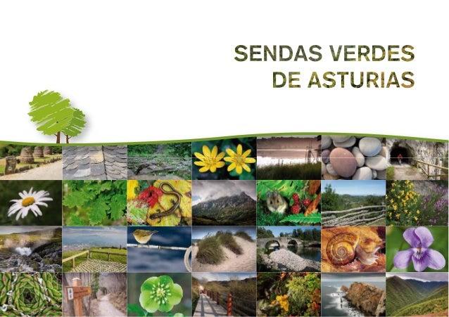 Promueve y edita: Gobierno del Principado de Asturias Consejería de Medio Ambiente, Ordenación del Territorio e Infraestru...