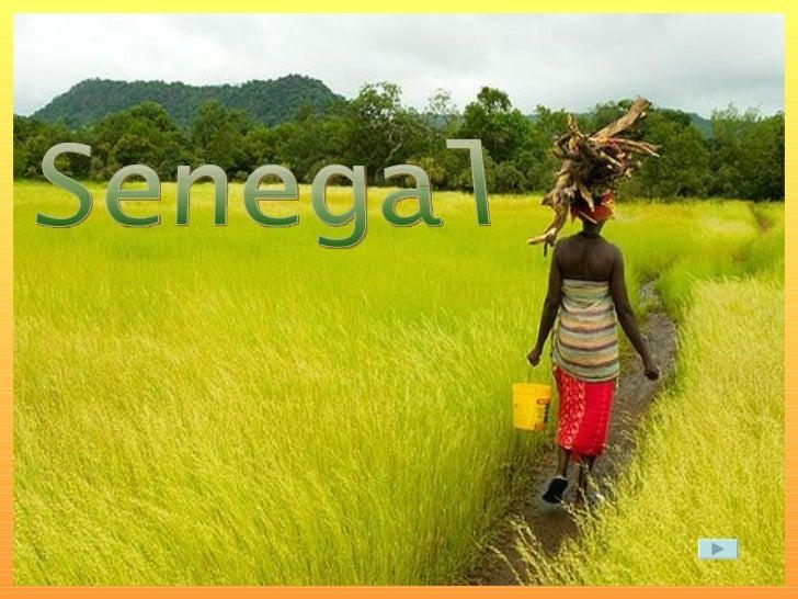 Presentazione Senegal
