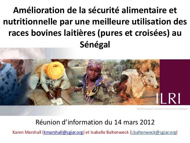 Amélioration de la sécurité alimentaire etnutritionnelle par une meilleure utilisation des races bovines laitières (pures ...