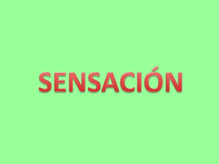 Sensacion y percepcion pp.