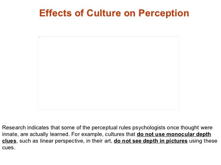 sensation and perception essay questions Sensation and perception 186 psychology: exploring behavior sensation versus perception in the study of sensation and perception, one of the basic questions.
