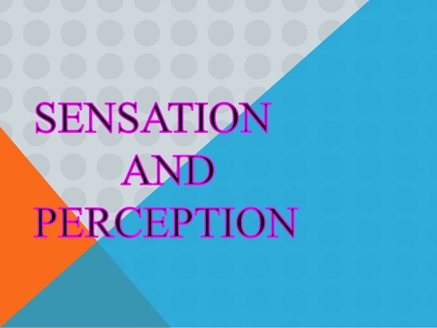 psychology sensation and perception essay Psychology essays: sensation and perception on visual art sensation and perception on visual art this research paper sensation and perception on visual art and other 63,000+ term papers.