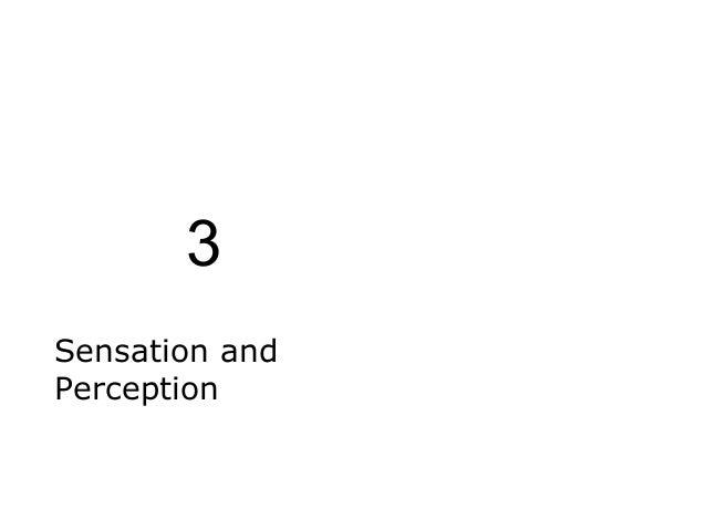 3 Sensation and Perception