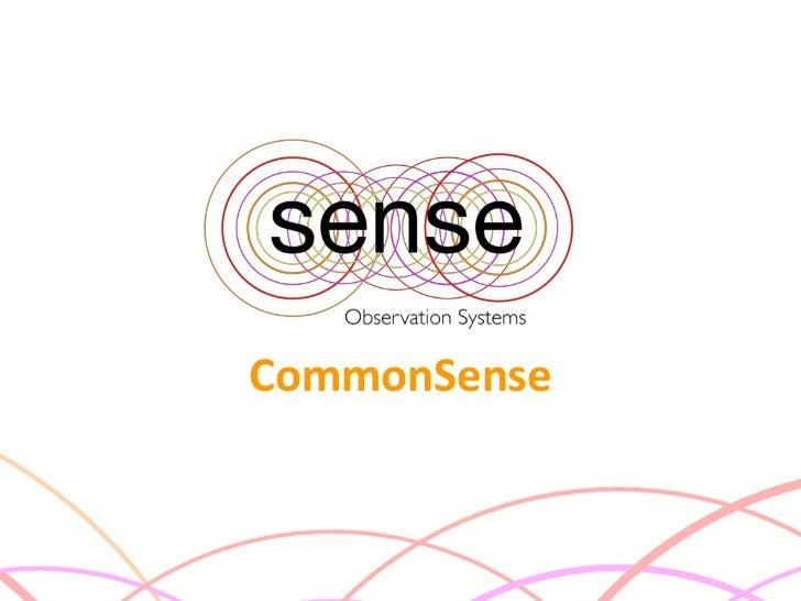 The Common Sense Platform - Jan Peter Larsen
