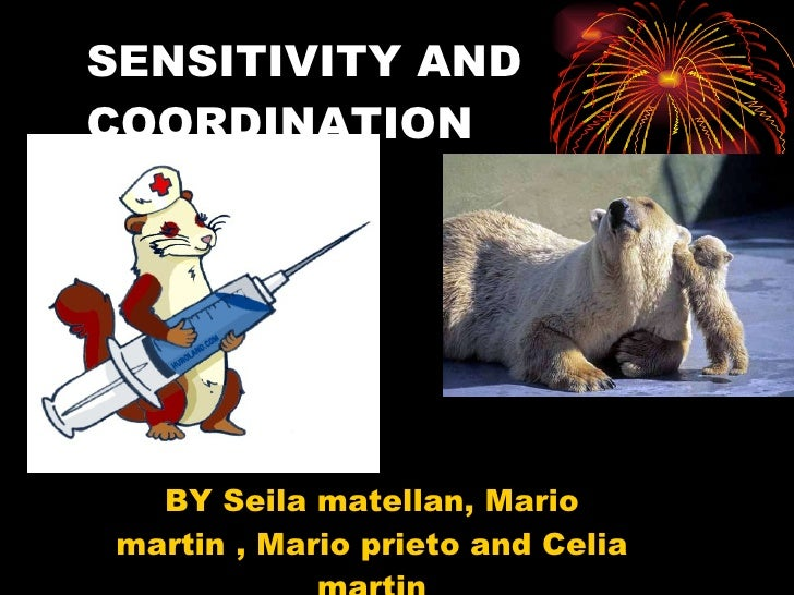 SENSITIVITY AND COORDINATION BY Seila matellan, Mario martin , Mario prieto and Celia martin