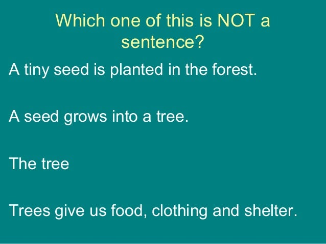 Which one of this is NOT a sentence? A tiny seed is planted in the forest. A seed grows into a tree. The tree Trees give u...