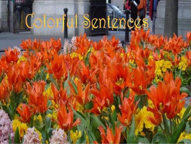 Sentences 091
