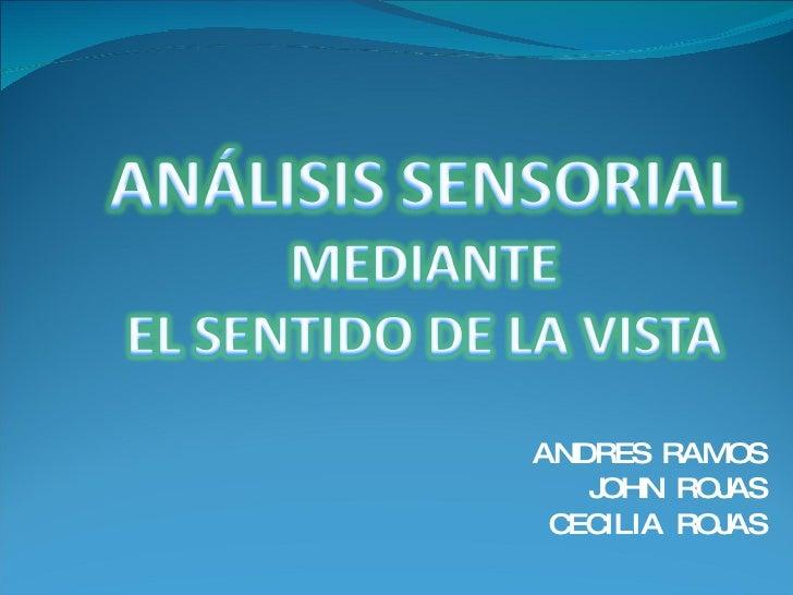 Sentido De La Vista Exposicion Complete