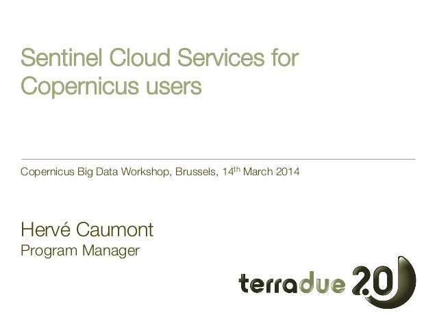 Sentinel Cloud Services for Copernicus users