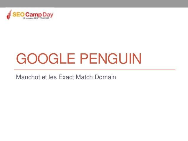 GOOGLE PENGUINManchot et les Exact Match Domain