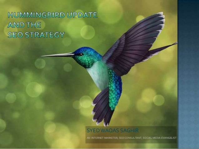 Hummingbird Update and the SEO Strategy