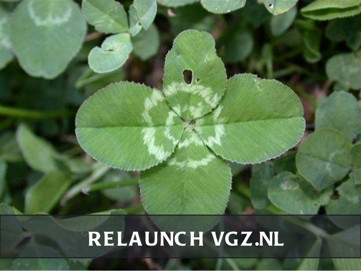 RELAUNCH VGZ.NL