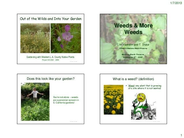 Garden Weeds - notes