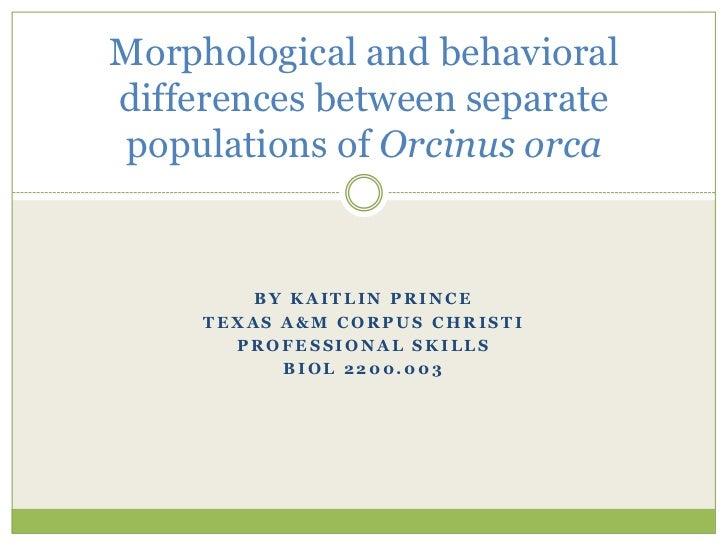 By Kaitlin Prince<br />Texas A&M Corpus Christi<br />Professional Skills<br />BIOL 2200.003<br />Morphological and behavio...