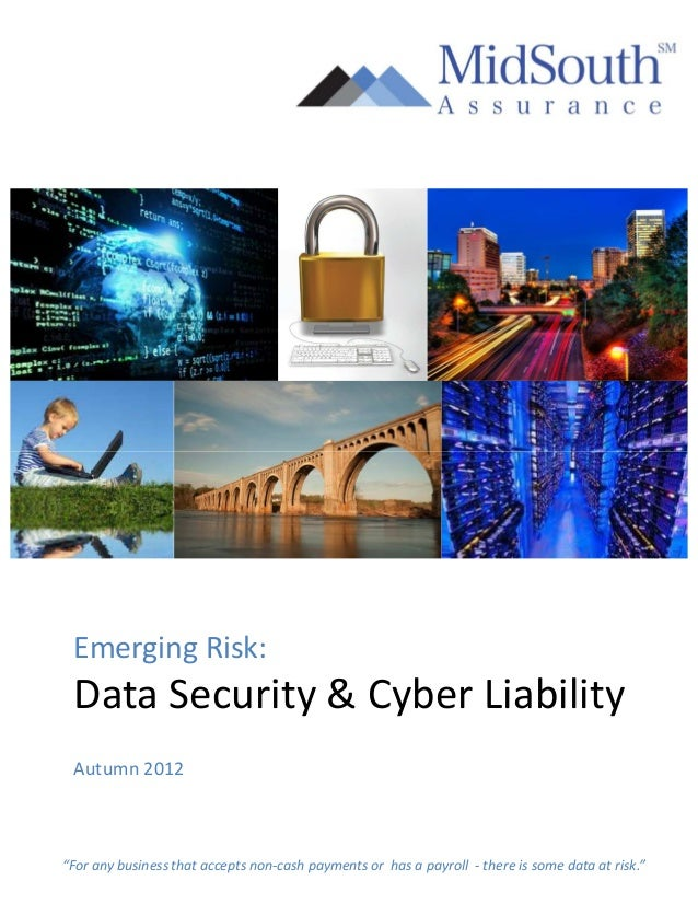 """Emerging Risk: Data Security & Cyber Liability Autumn 2012""""For any business that accepts non-cash payments or has a payrol..."""