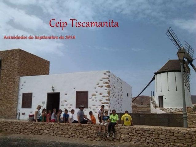 Ceip Tiscamanita