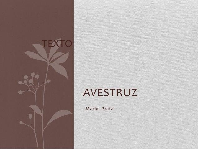 AVESTRUZMario PrataTEXTO