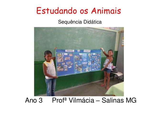 Estudando os Animais Sequência Didática Ano 3 Profª Vilmácia – Salinas MG