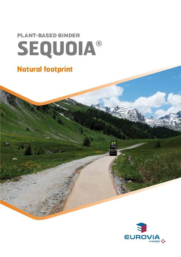 Plant-based binder Sequoia® - Naturel footprint