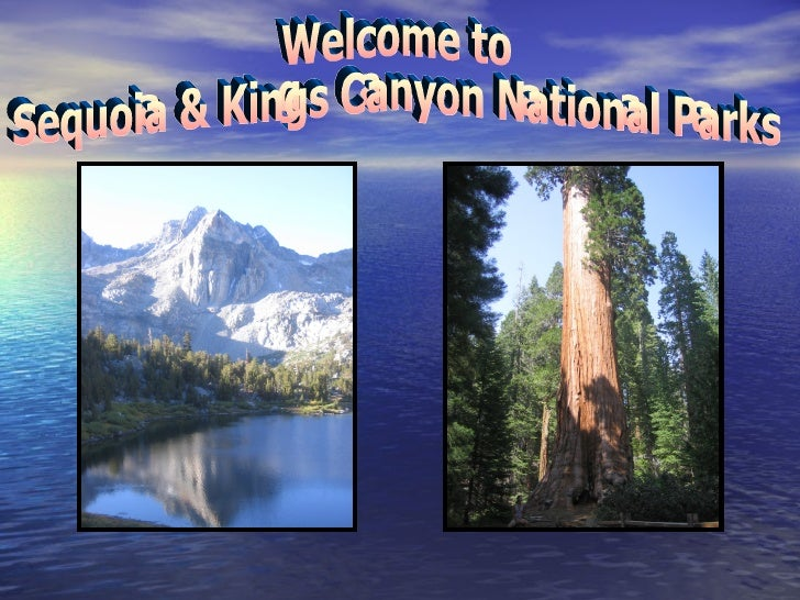 Welcome to  Sequoia & Kings Canyon National Parks