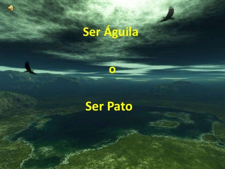 Ser Águila<br />o<br />Ser Pato<br />