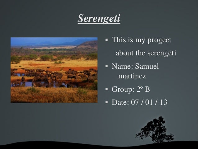 Serengeti            Thisismyprogect             abouttheserengeti            Name:Samuel              martinez...
