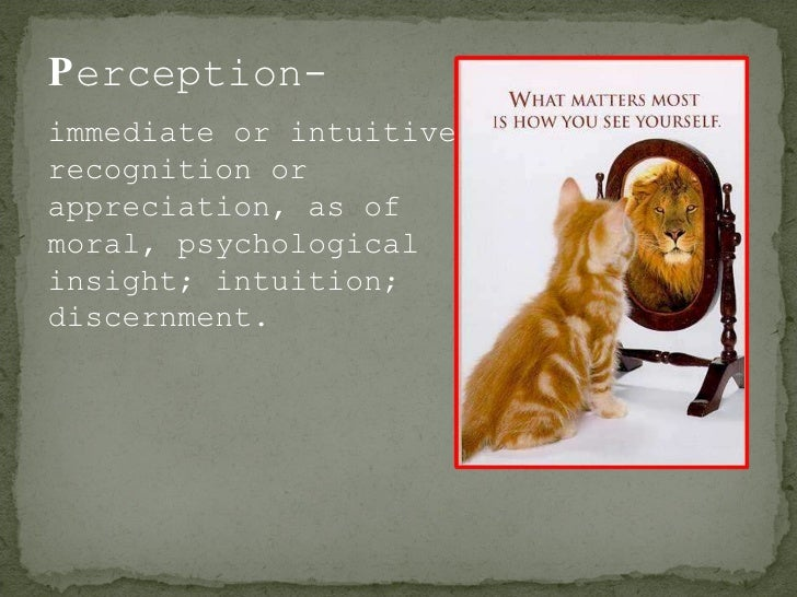 P erception- immediate or intuitive recognition or appreciation, as of moral, psychological insight; intuition; discernment.