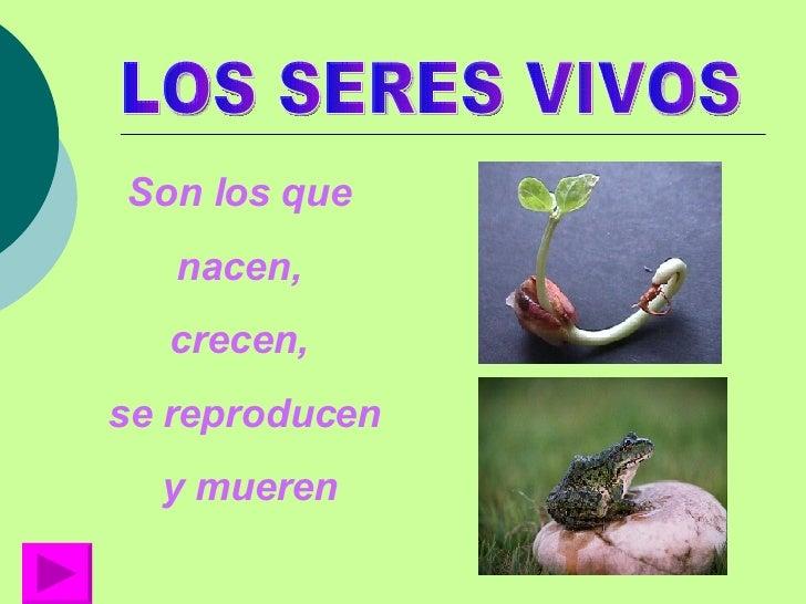 LOS SERES VIVOS Son los que  nacen,  crecen,  se reproducen y mueren