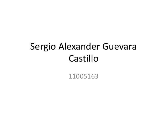 Sergio Alexander Guevara Castillo 11005163