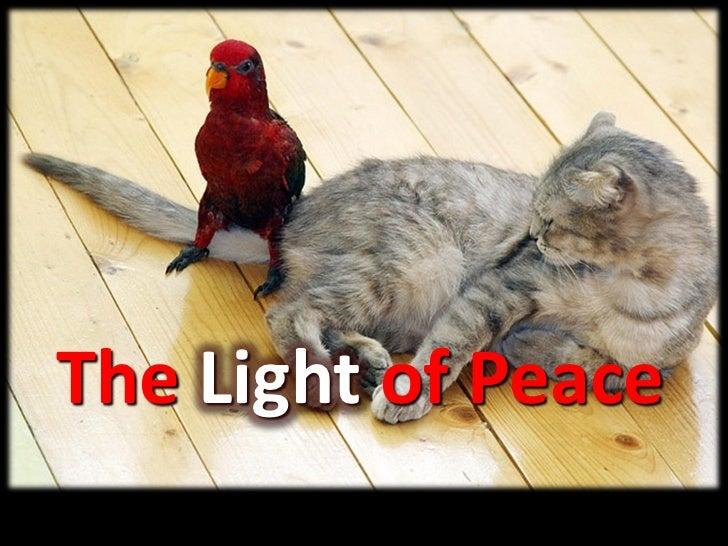 Light of Peace - Advent Week 4