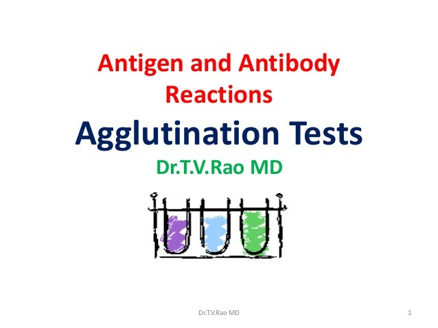 Antigen and Antibody Reactions  Agglutination Tests Dr.T.V.Rao MD  Dr.T.V.Rao MD  1