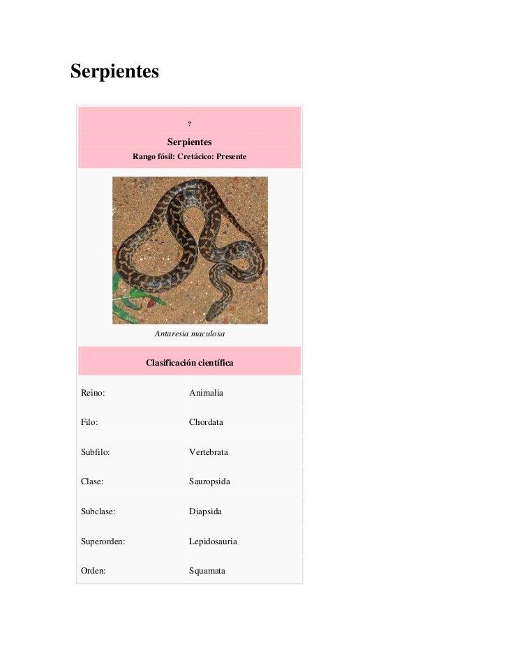 Serpientes                              ?                        Serpientes               Rango fósil: Cretácico: Presente...