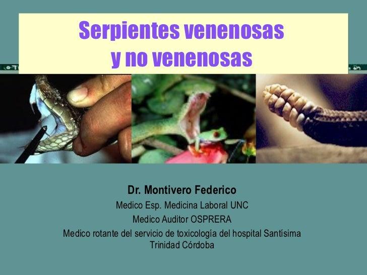 Mordeduras de Serpientes y el uso correcto de sueros