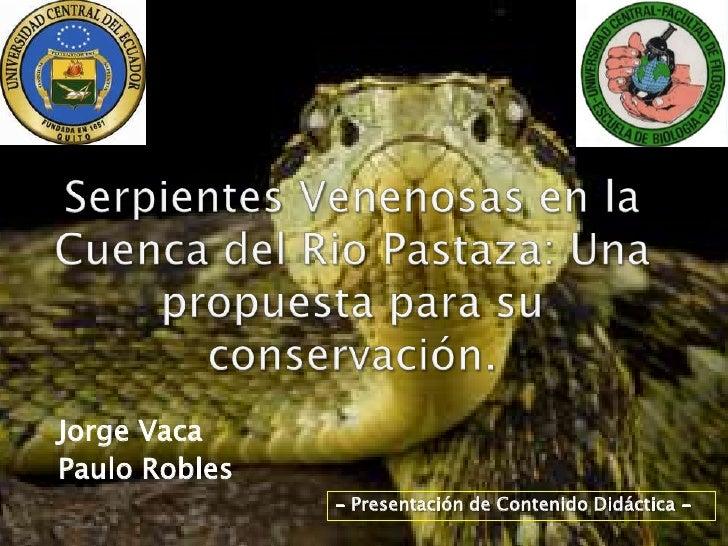 Jorge VacaPaulo Robles               - Presentación de Contenido Didáctica -