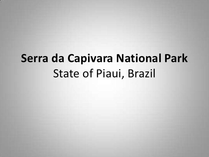 Serra da Capivara National Park      State of Piaui, Brazil