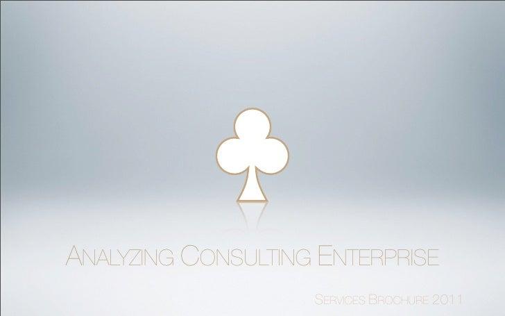ACE Services brochure 2012
