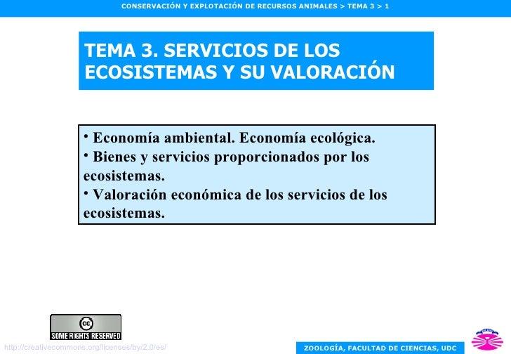 TEMA 3. SERVICIOS DE LOS ECOSISTEMAS Y SU VALORACIÓN <ul><li>Economía ambiental. Economía ecológica. </li></ul><ul><li>Bie...